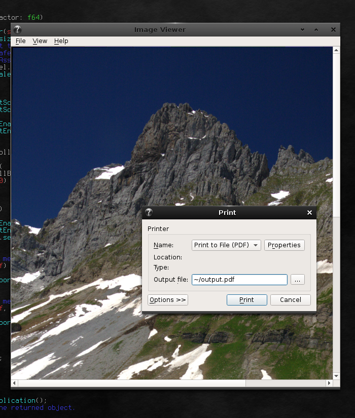 Image Viewer Screenshot